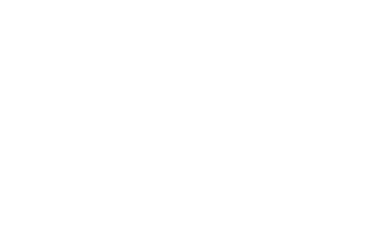Luz Artworks